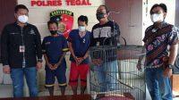 Burung Murai12 Ekor Dicuri, Pencuri dan Penadahnya Langsung Di Penjara