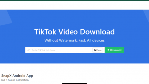 download video tiktok tanpa watermark